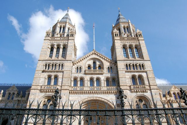 Natural History Museum - Edward Hotel London