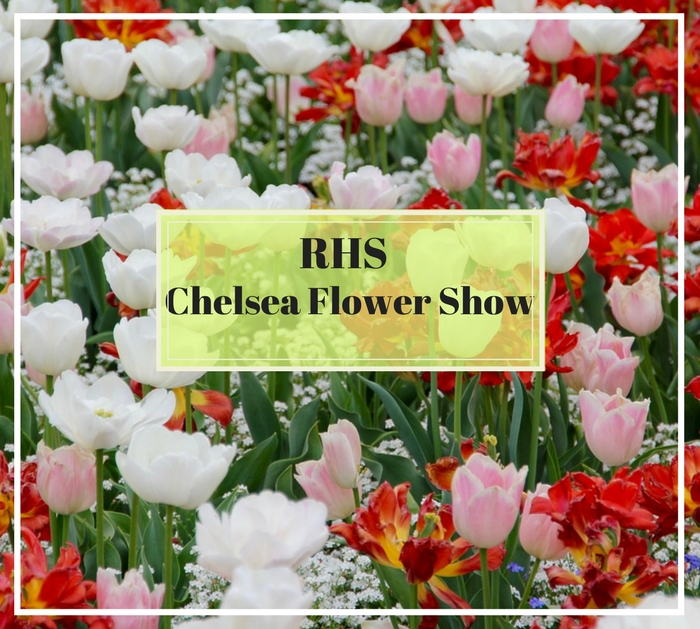 Look no further than the RHS Chelsea Flower Show